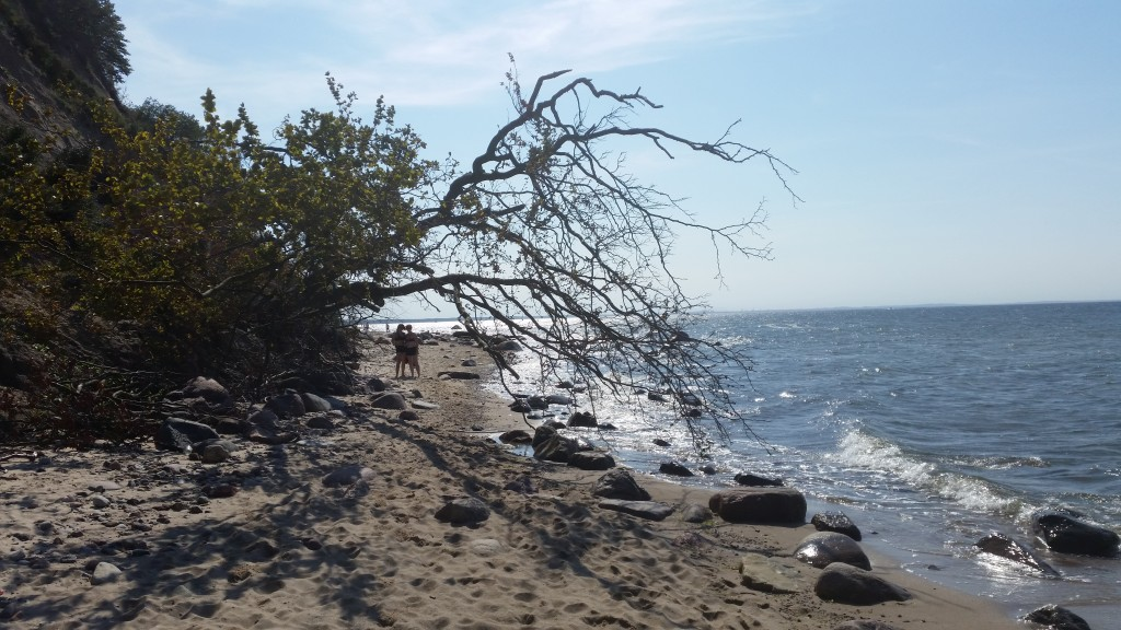 Piękna plaża kawałek dalej od Wisełki... fot. Trz