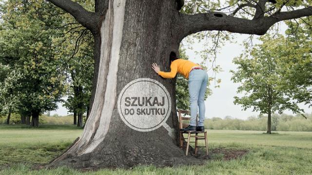 liderzy_drzewo